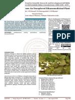 Anacyclus Pyrenthrum An Unexplored Ethanomedicinal Plant