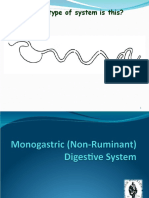 Monogastric (1).ppt