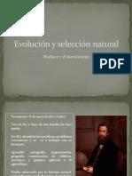 Presentación selección natural