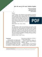artigo_michels.pdf