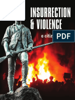Insurrection and Violence Final Analysis
