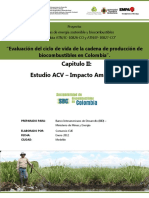 Capitulo_2_ACV_final