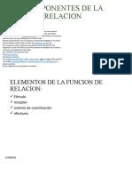 COMPONENTES DE LA RELACION MAFER.pptx