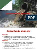 Contaminacion ambiental 1