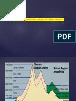 Clase 4 lomas de lachay.pdf