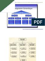 Organigrammes-214h6as.pdf