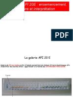 GALERIE API 20E  ensemencement lecture et interprétation