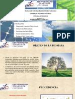 ENER_BIOMASA-OFICIAL.pptx