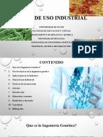 SEMINARIO DE INGENIERIA GENETICA.