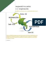 cuadros comparativos entre fotosíntesis y respiración.docx