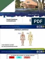 2. Drenaje Linfático.pdf