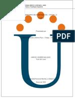 Paso1 Aporte Individual Fase-3