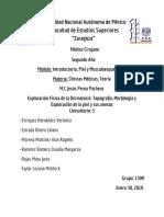 Exploración Física de la Dermatosis  y Exploración de la piel y sus anexos