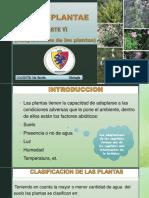 REINO PLANTAE VI ADAPTACIONES DE LAS PLANTAS.pdf