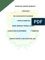 FISIOLOGIA_GRISELBERENICE_3° SEMESTRE_ENFERMERIA
