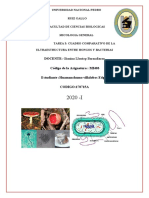 Ultraestructura entre hongos y bacterias.