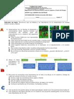 guia sociales 1.docx