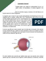 Anatomia Oftalmologica