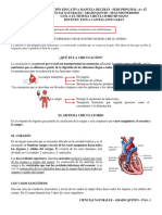 GUIA 4 - CIENCIAS NATURALES - 2P - 5 (1)