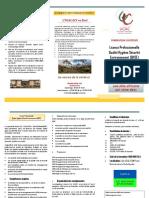 Brochure LPRO QHSE