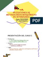 PresentacionAMBV19-20