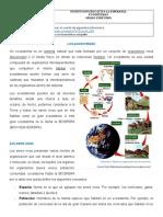 ECOSISTEMAS.docx