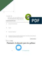 ALIMENTO PARA GALLINAS