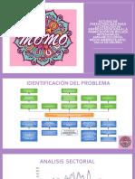 ESTUDIO DE PREFACTIBILIDAD PARA LA CREACIÓN DE EMPRES FINAL