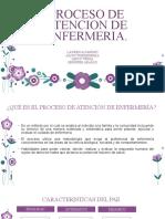PROCESO DE ATENCION DE ENFERMERIA (3)