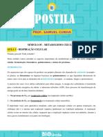 apmc05._metabolismo_celular.pdf