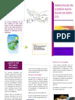 tripticorecursosnaturales-140630203533-phpapp02.pdf