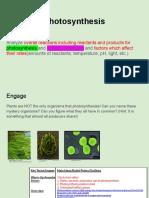 Aaliyah Parrish-Photosynthesis Buchy.pdf