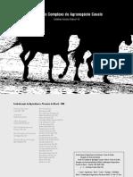 BOOK Estudo Cavalo.pdf