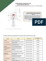 ACTIVIDAD SEMANA N°2-Ciclo 2020-2-AV (1)