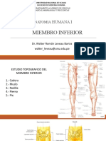 1. Segmento Miembro Inferior-osteologia Unu2020