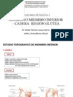 2. Segmento Miembro Inferior-cadera-región Glútea Unu 2020