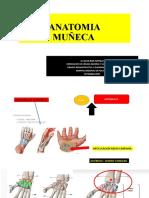 Anatomia Muñeca Unu2020