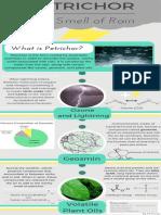 Infografía sobre el Petricor.