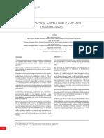 CANNABIS77.pdf