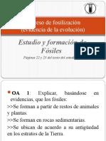 Proceso de fosilización PPT