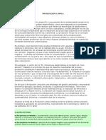 43382_179241_Introducción a la Producción Limpia.doc