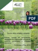 ESCRITURA COMO PROCESO.pdf
