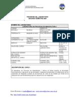 Programa lab. Ing PM1 2-2020