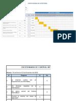 Cronograma de Auditoria