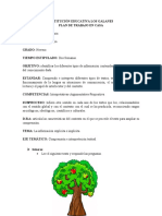 PLAN DE TRABAJO EN CASA NOVENO.docx