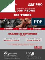 Catálogo Don Pedro
