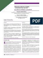 218-Otro-2403-1-10-20190722.pdf