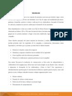 Diagnóstico y planeación del talento humano de una empresa (1)