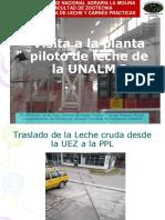 Visita PPL I