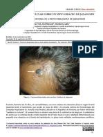 236-Otro-2420-1-10-20190727.pdf